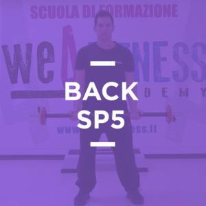 SP_05_back