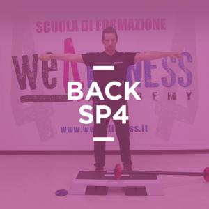 back_sp4
