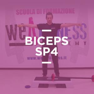biceps_sp4