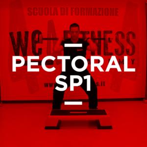 icona_Pectoral_01