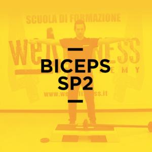 biceps_2