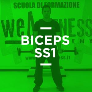 biceps_ss1