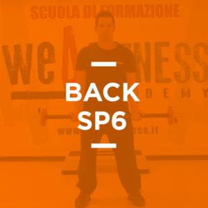 back_06