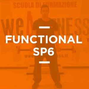 functional_06