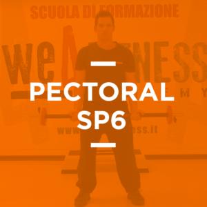 pectoral_06